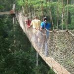 ghana-2008009-2-293